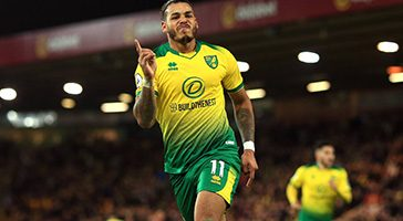 onel hernandez Norwich City build the nest