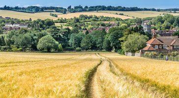 Ridgeway Walk Challenge